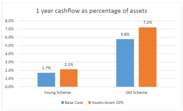 Figure 1 – cashflow requirements for immature and mature schemes